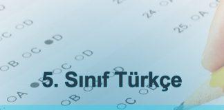 5. sınıf Türkçe kazanım testleri cümlede anlam testi çöz