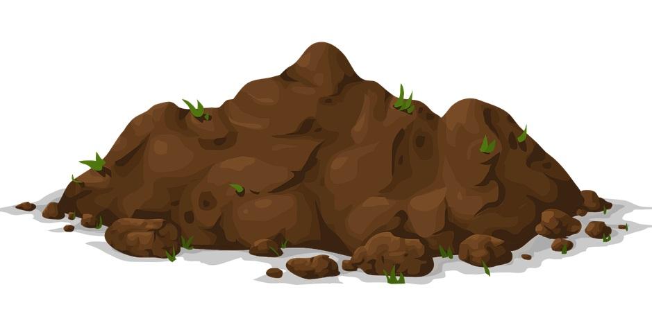 soil-toprak-4-sinif-ingilizce-kelimeler-testi