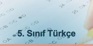 2019-PYBS-bursluluk-sorulari-coz-turkce-sorular