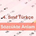 4. Sınıf Sözcükte Anlam(Gerçek-Mecaz-Terim Anlam) testi çöz