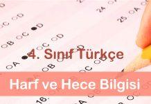 4. sınıf türkçe testi çöz