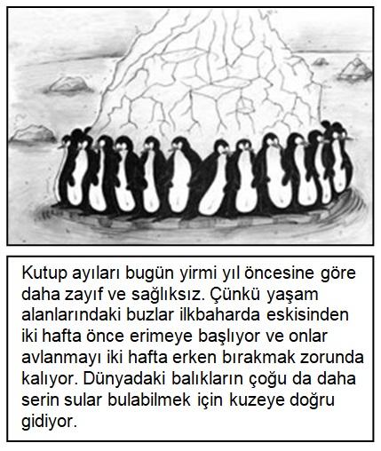 2019 pybs 6. sınıf türkçe soruları çöz