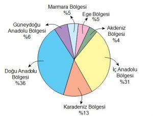 5. sınıf bursluluk sınavı 2020 türkçe soruları çözüm